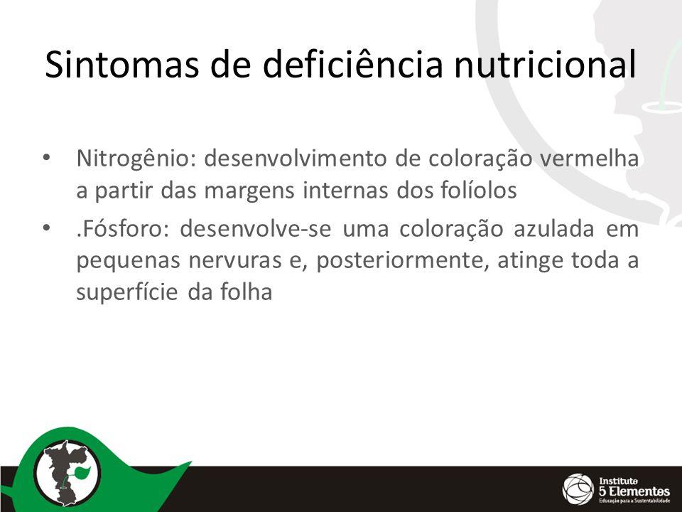Sintomas de deficiência nutricional Nitrogênio: desenvolvimento de coloração vermelha a partir das margens internas dos folíolos.Fósforo: desenvolve-s