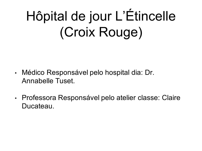 Hôpital de jour L'Étincelle (Croix Rouge) Médico Responsável pelo hospital dia: Dr.