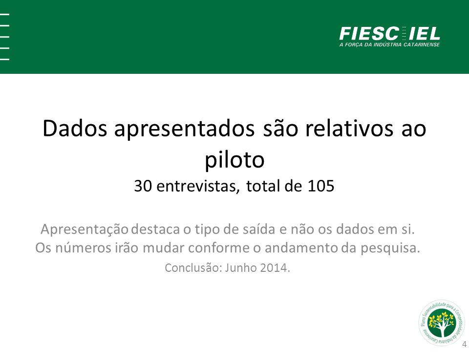 Dados apresentados são relativos ao piloto 30 entrevistas, total de 105 Apresentação destaca o tipo de saída e não os dados em si. Os números irão mud