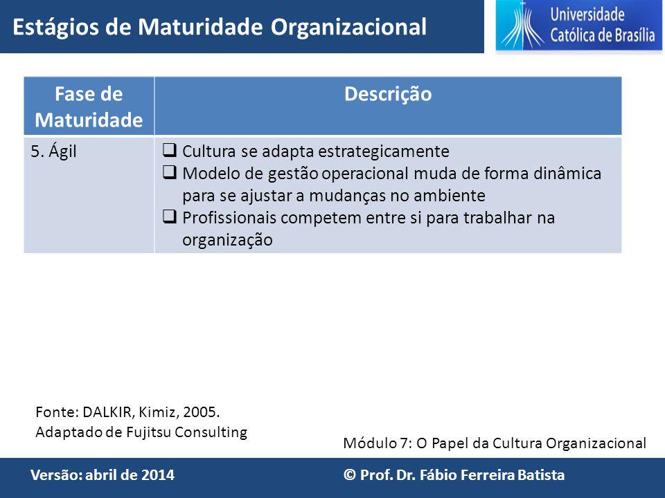 Módulo 7: O Papel da Cultura Organizacional Versão: abril de 2014 © Prof. Dr. Fábio Ferreira Batista Fase de Maturidade Descrição 5. Ágil  Cultura se