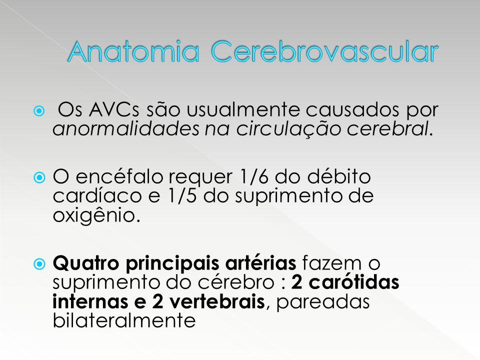  Os AVCs são usualmente causados por anormalidades na circulação cerebral.  O encéfalo requer 1/6 do débito cardíaco e 1/5 do suprimento de oxigênio