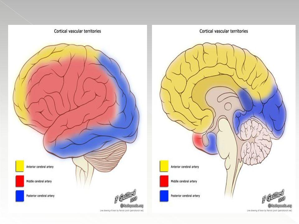 Fluxo Sanguíneo Cerebral (FSC) pode ser calculado por meio da seguinte fórmula: FSC=PPC/RCV onde PPC= PAM-PIC Auto regulação da FSC permite que o fluxo permaneça constante em situações de queda ou elevação da PPC, através de vasodilatação e vasoconstrição de arteríolas cerebrais, respectivamente, dentro de determinados limites de PAM (60 e 140 mmHg).