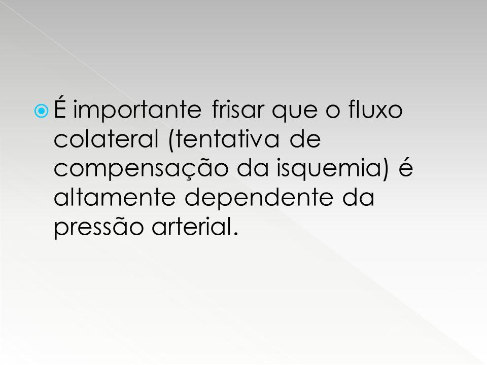  É importante frisar que o fluxo colateral (tentativa de compensação da isquemia) é altamente dependente da pressão arterial.