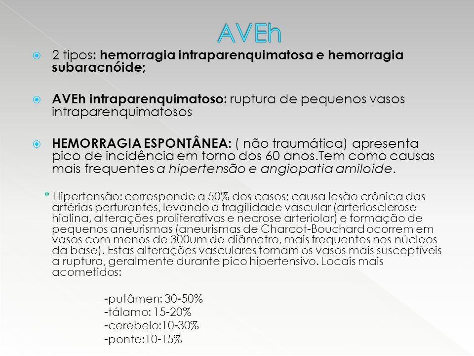  2 tipos : hemorragia intraparenquimatosa e hemorragia subaracnóide;  AVEh intraparenquimatoso: ruptura de pequenos vasos intraparenquimatosos  HEM