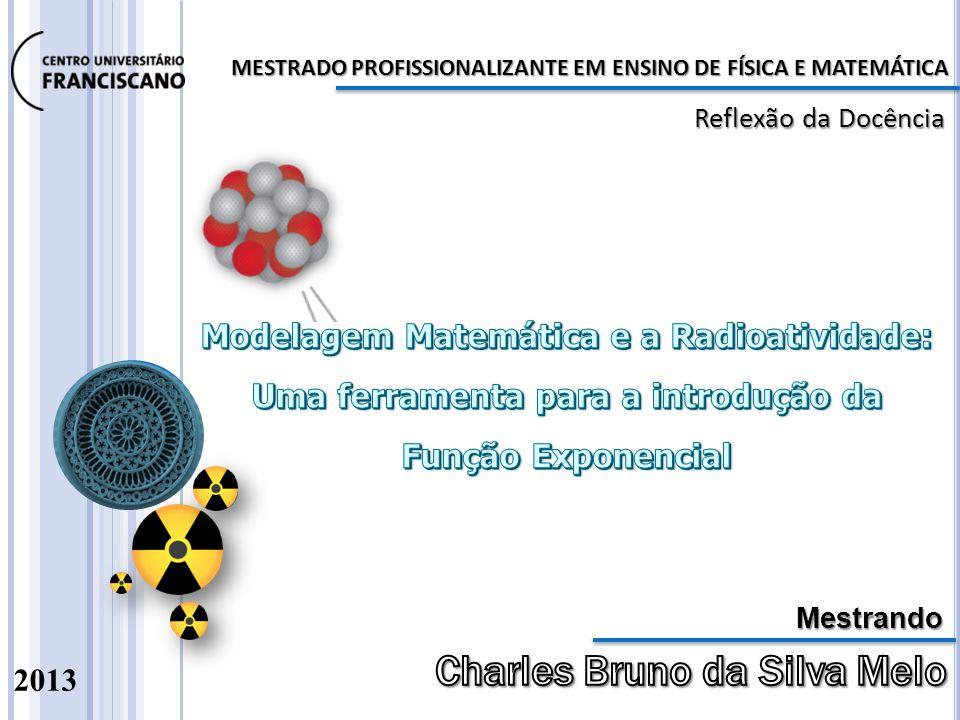MESTRADO PROFISSIONALIZANTE EM ENSINO DE FÍSICA E MATEMÁTICA 2013 Reflexão da Docência Mestrando
