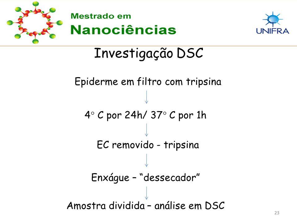 23 Investigação DSC Epiderme em filtro com tripsina 4° C por 24h/ 37° C por 1h EC removido - tripsina Enxágue – dessecador Amostra dividida – análise em DSC