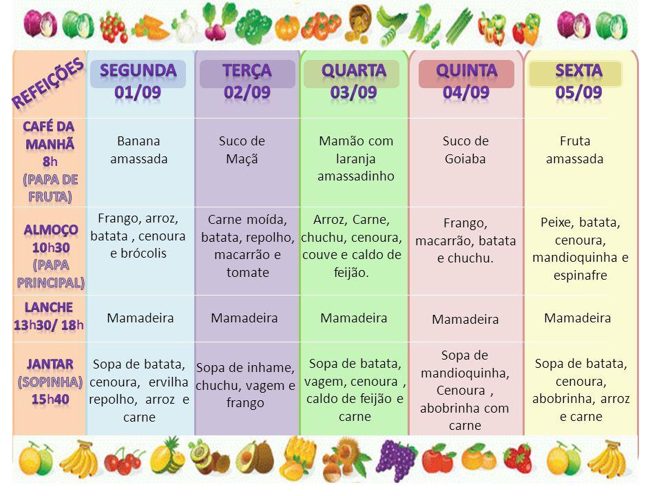 Banana amassada Suco de Maçã Mamão com laranja amassadinho Suco de Goiaba Fruta amassada Frango, arroz, batata, cenoura e brócolis Carne moída, batata, repolho, macarrão e tomate Arroz, Carne, chuchu, cenoura, couve e caldo de feijão.