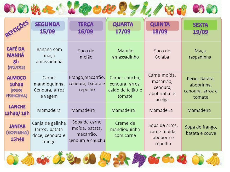 Banana com maçã amassadinha Suco de melão Mamão amassadinho Suco de Goiaba Maça raspadinha Carne, mandioquinha, Cenoura, arroz e vagem Carne moída, macarrão, cenoura, abobrinha e acelga Carne, chuchu, cenoura, arroz, caldo de feijão e tomate Frango,macarrão, cenoura, batata e repolho Peixe, Batata, abobrinha, cenoura, arroz e tomate Mamadeira Canja de galinha (arroz, batata doce, cenoura e frango Sopa de carne moída, batata, macarrão, cenoura e chuchu Creme de mandioquinha com carne Sopa de arroz, carne moída, abóbora e repolho Sopa de frango, batata e couve