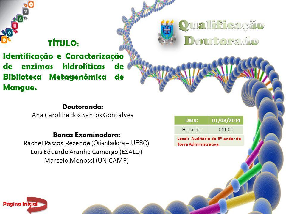 TÍTULO : Identificação e Caracterização de enzimas hidrolíticas de Biblioteca Metagenômica de Mangue.
