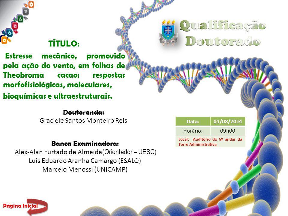 TÍTULO : Estresse mecânico, promovido pela ação do vento, em folhas de Theobroma cacao: respostas morfofisiológicas, moleculares, bioquímicas e ultraestruturais.