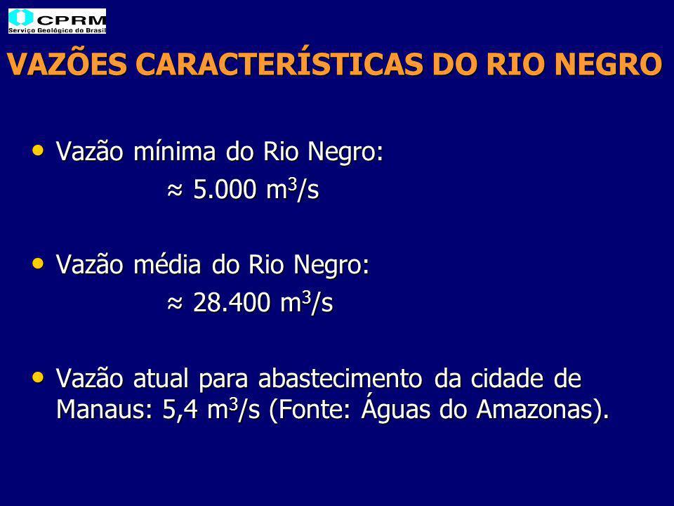 VAZÕES CARACTERÍSTICAS DO RIO NEGRO Vazão mínima do Rio Negro: Vazão mínima do Rio Negro: ≈ 5.000 m 3 /s Vazão média do Rio Negro: Vazão média do Rio Negro: ≈ 28.400 m 3 /s Vazão atual para abastecimento da cidade de Manaus: 5,4 m 3 /s (Fonte: Águas do Amazonas).