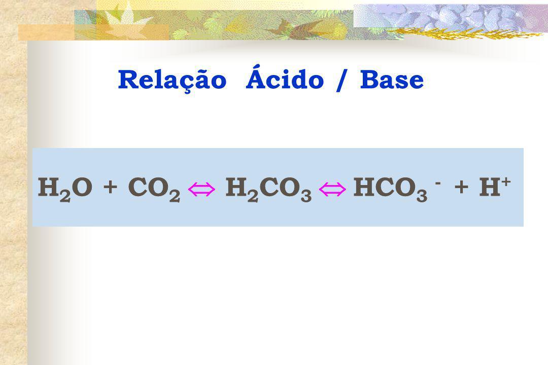 H 2 O + CO 2  H 2 CO 3  HCO 3 - + H +