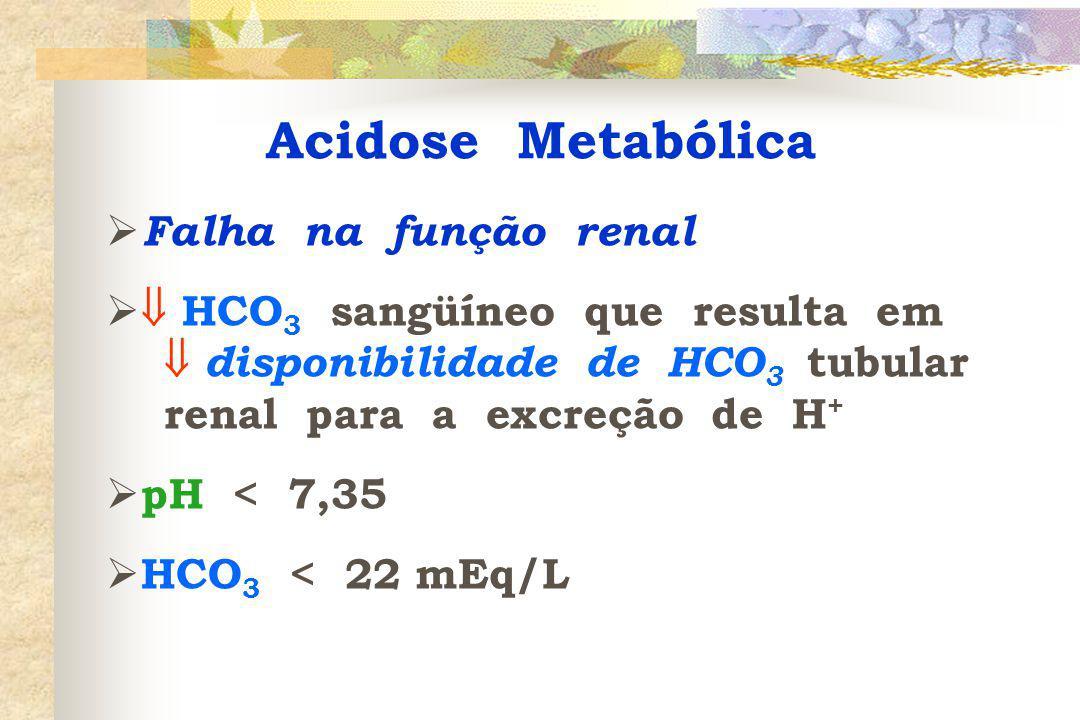 Acidose Metabólica  Falha na função renal   HCO 3 sangüíneo que resulta em  disponibilidade de HCO 3 tubular renal para a excreção de H +  pH < 7,35  HCO 3 < 22 mEq/L