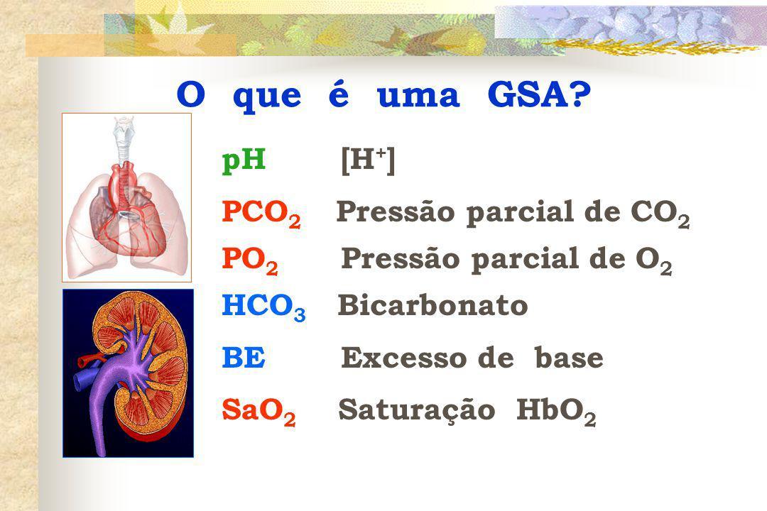 pH [H + ] PCO 2 Pressão parcial de CO 2 PO 2 Pressão parcial de O 2 HCO 3 Bicarbonato BE Excesso de base SaO 2 Saturação HbO 2 O que é uma GSA?