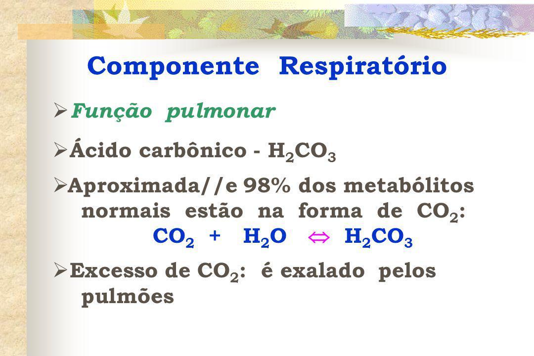 Componente Metabólico  Função renal  Base bicarbonato - NaHCO 3  Ação renal excretando H + na urina e reabsorvendo HCO 3 - para o sangue: 1) troca ativa de Na + por H + entre as células tubulares e o filtrado glomerular 2) a anidrase carbônica é a enzima que acelera a hidratação/desidratação do CO 2 nas células epiteliais renais