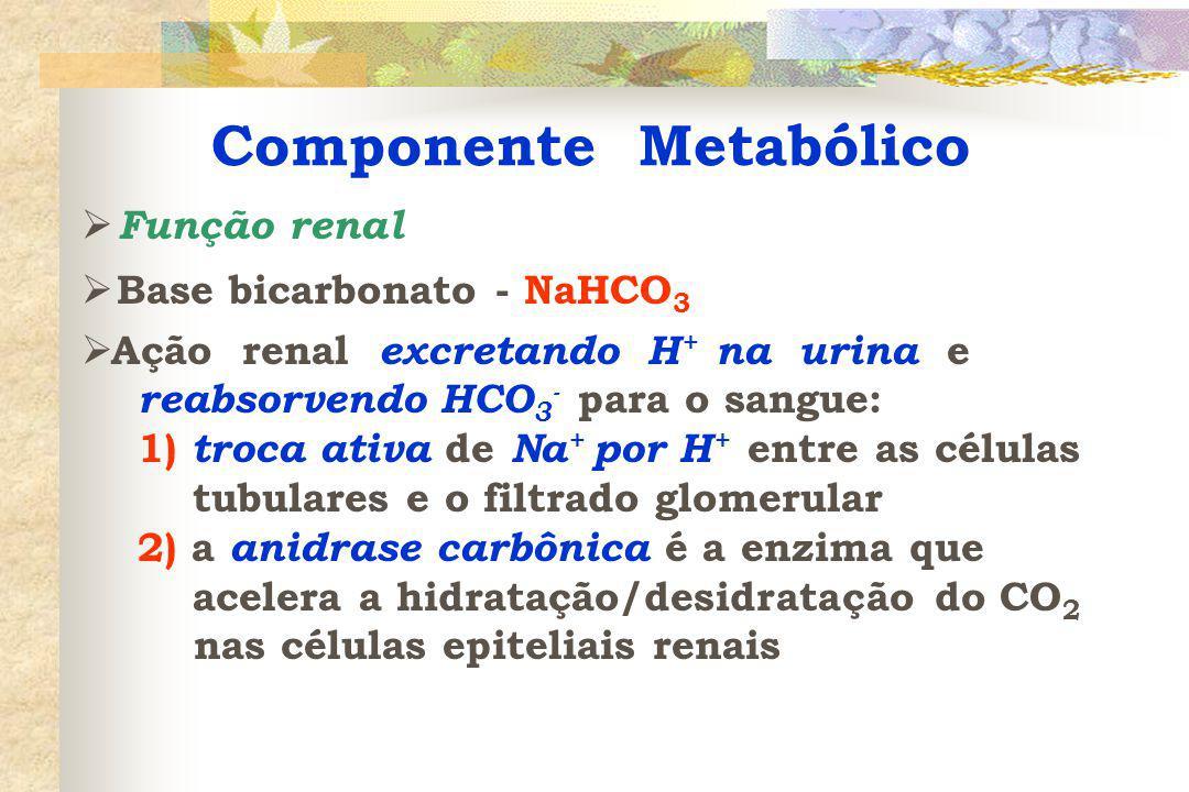 Acidose Respiratória pH 7,30 PaCO 2 60 mmHg HCO 3 26 mEq/L
