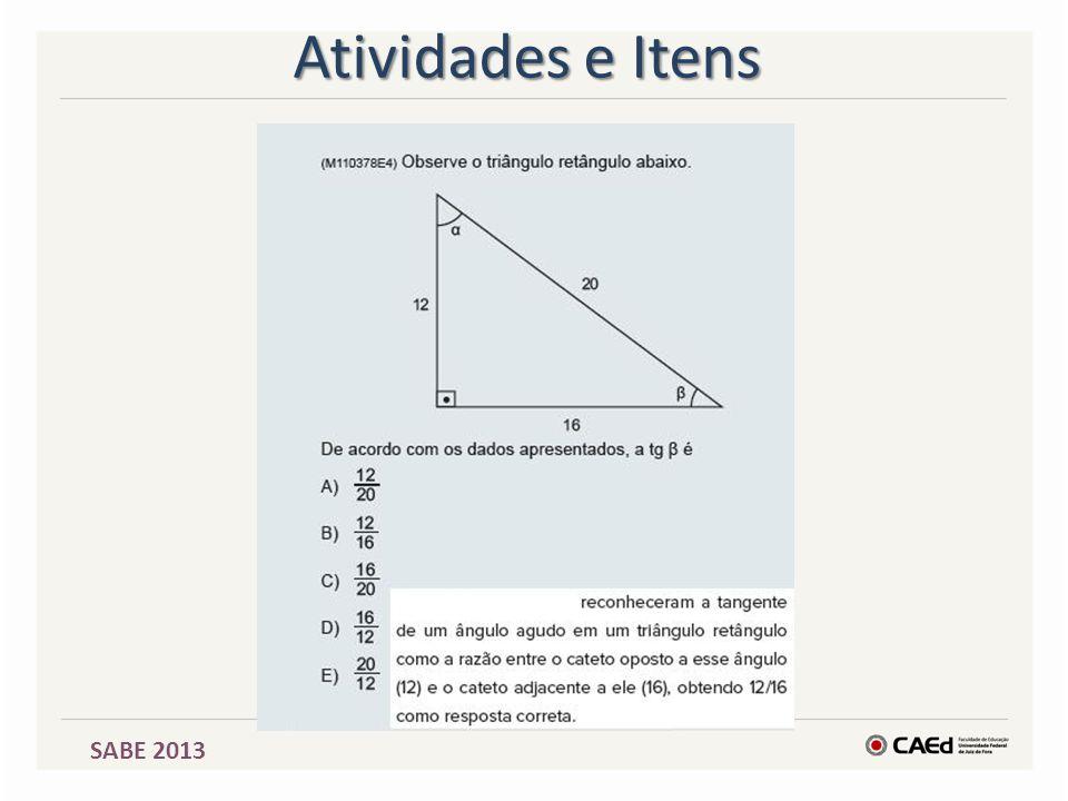SABE 2013 Atividades e Itens