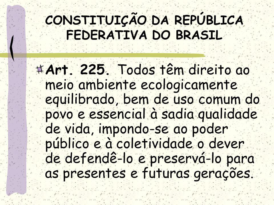 CONSTITUIÇÃO DA REPÚBLICA FEDERATIVA DO BRASIL Art. 225. Todos têm direito ao meio ambiente ecologicamente equilibrado, bem de uso comum do povo e ess