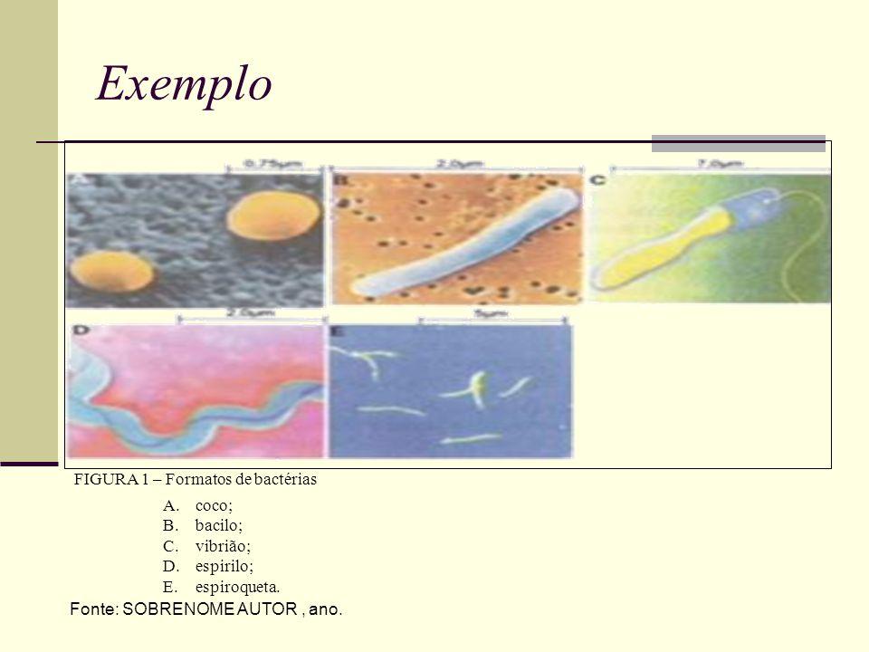 Exemplo A.coco; B.bacilo; C.vibrião; D.espirilo; E.espiroqueta.