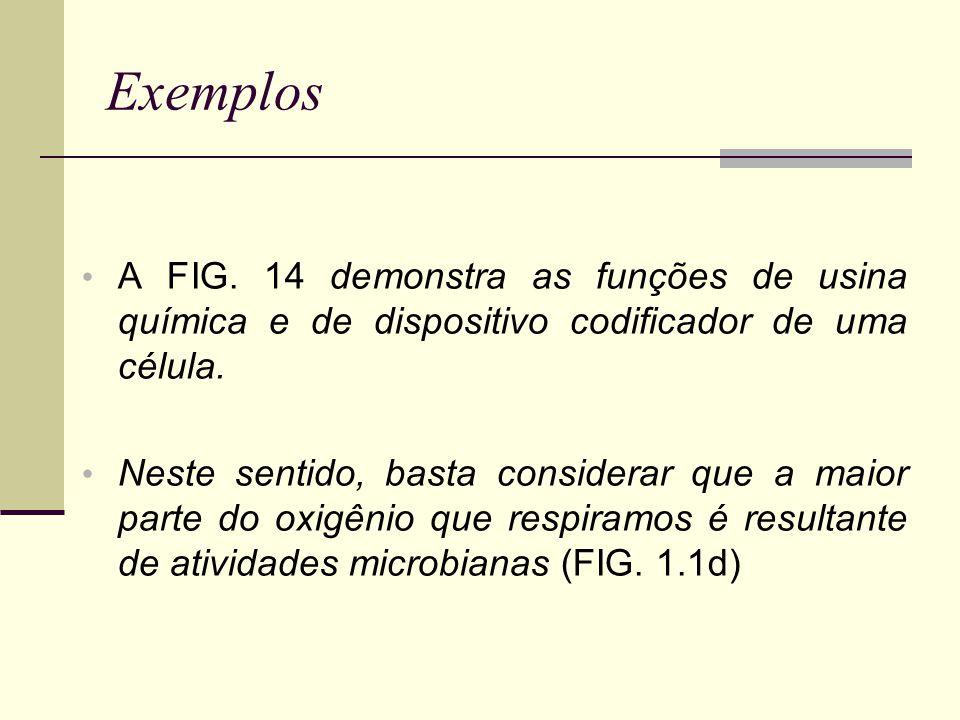 Nota: Padrões de precipitação, índices de erosividade, padrão de chuva avançado, padrões intermediários para as chuvas de Seropédica e Nova Friburgo,RJ.