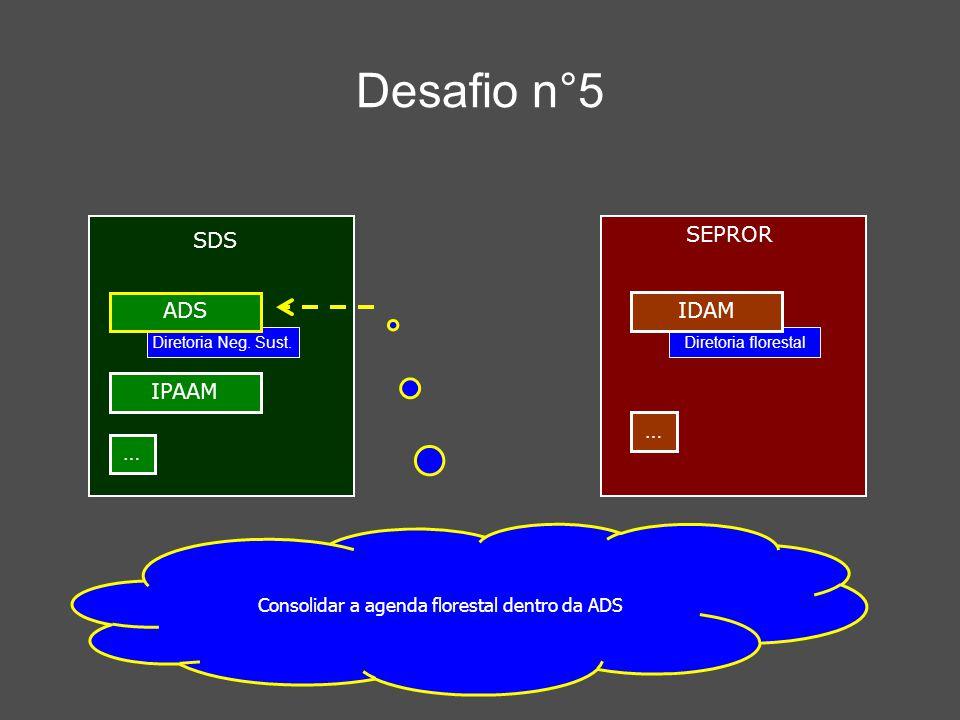 Desafio n°5 Consolidar a agenda florestal dentro da ADS SDS IPAAM … SEPROR … Diretoria florestal IDAM Diretoria Neg. Sust. ADS