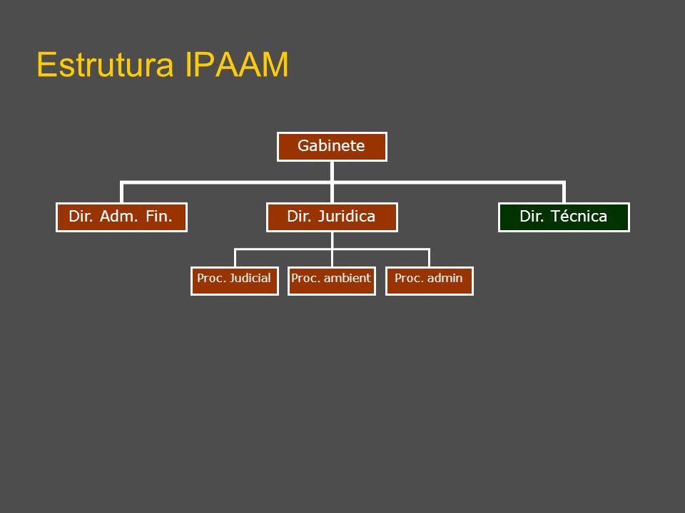 Dir. Adm. Fin.Dir. Técnica Gabinete Estrutura IPAAM Dir. Juridica Proc. ambientProc. adminProc. Judicial