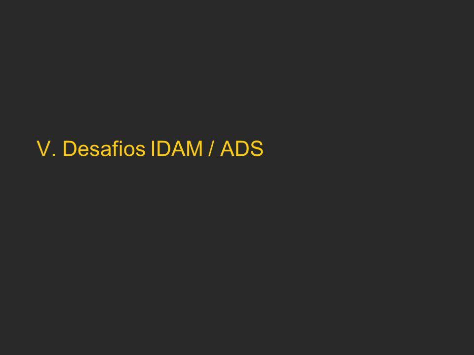 V. Desafios IDAM / ADS