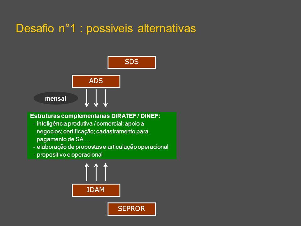 Estruturas complementarias DIRATEF / DINEF: - inteligência produtiva / comercial; apoio a negocios; certificação; cadastramento para pagamento de SA …