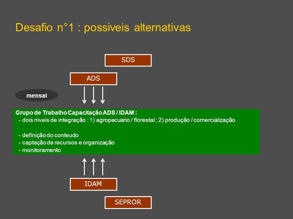 Grupo de Trabalho Capacitação ADS / IDAM : - dois niveis de integração : 1) agropecuario / florestal ; 2) produção / comercialização - definição do conteudo - captação de recursos e organização - monitoramento Desafio n°1 : possiveis alternativas ADS IDAM SDS SEPROR mensal