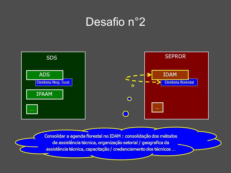 Desafio n°2 Consolidar a agenda florestal no IDAM : consolidação dos métodos de assistência técnica, organização setorial / geografica da assistência