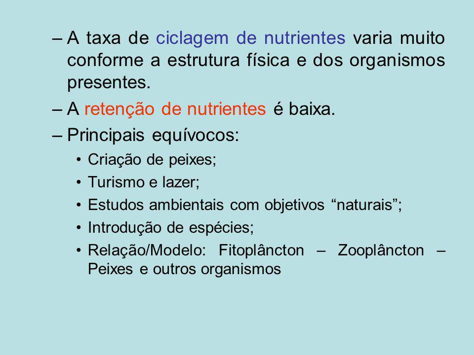–A taxa de ciclagem de nutrientes varia muito conforme a estrutura física e dos organismos presentes. –A retenção de nutrientes é baixa. –Principais e
