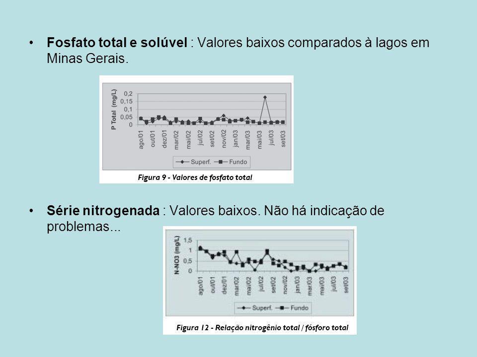 Fosfato total e solúvel : Valores baixos comparados à lagos em Minas Gerais. Série nitrogenada : Valores baixos. Não há indicação de problemas...