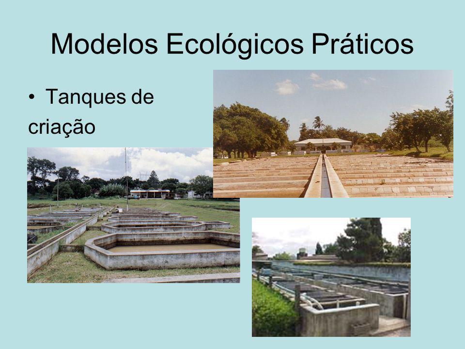 Modelos Ecológicos Práticos Tanques de criação