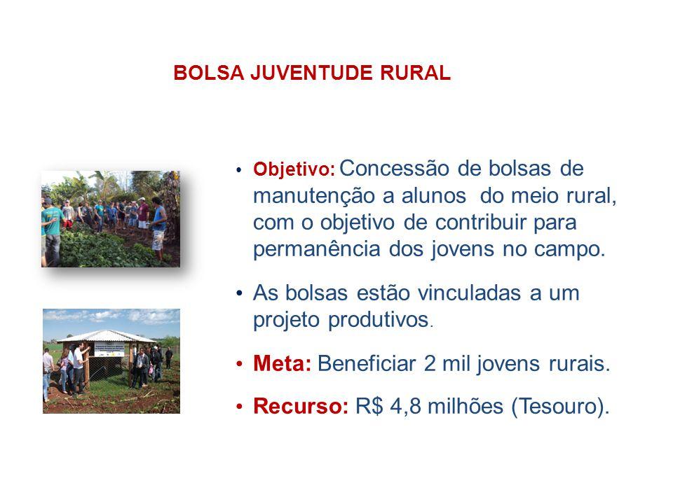 BOLSA JUVENTUDE RURAL Objetivo: Concessão de bolsas de manutenção a alunos do meio rural, com o objetivo de contribuir para permanência dos jovens no campo.