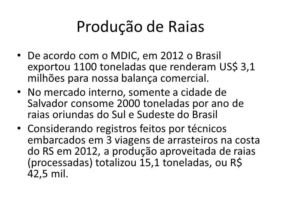 Produção de Raias De acordo com o MDIC, em 2012 o Brasil exportou 1100 toneladas que renderam US$ 3,1 milhões para nossa balança comercial.