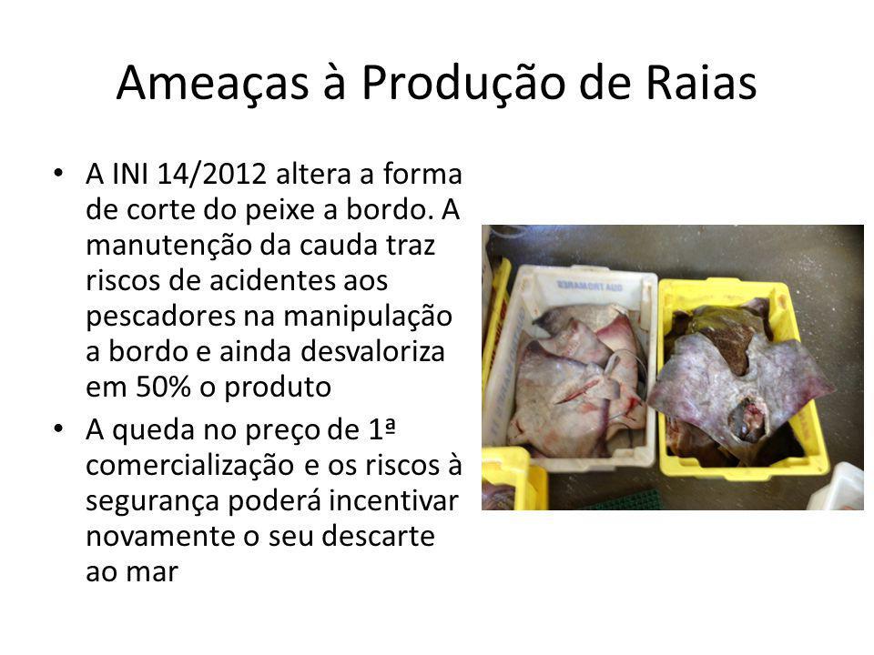 Ameaças à Produção de Raias A INI 14/2012 altera a forma de corte do peixe a bordo. A manutenção da cauda traz riscos de acidentes aos pescadores na m