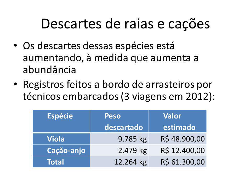 Descartes de raias e cações Os descartes dessas espécies está aumentando, à medida que aumenta a abundância Registros feitos a bordo de arrasteiros por técnicos embarcados (3 viagens em 2012): Espécie Peso descartado Valor estimado Viola 9.785 kg R$ 48.900,00 Cação-anjo 2.479 kg R$ 12.400,00 Total 12.264 kgR$ 61.300,00