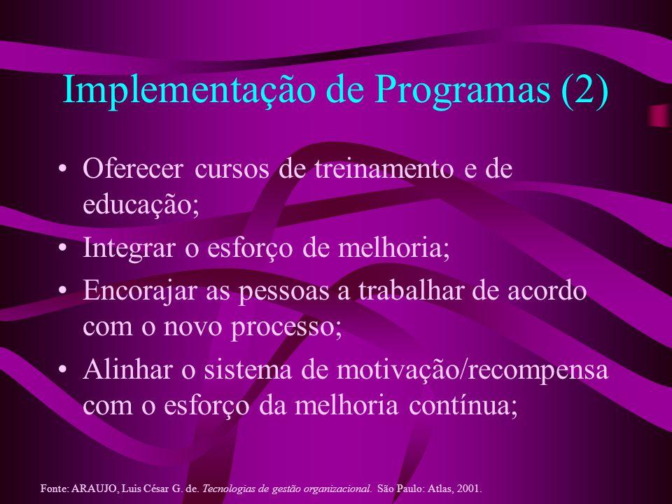 Implementação de Programas (3) Prover os recursos necessários; Servir como líderes e orientadores ativos; Selecionar os principais projetos dirigidos pela administração superior; e Desenvolver uma missão/visão para a organização.