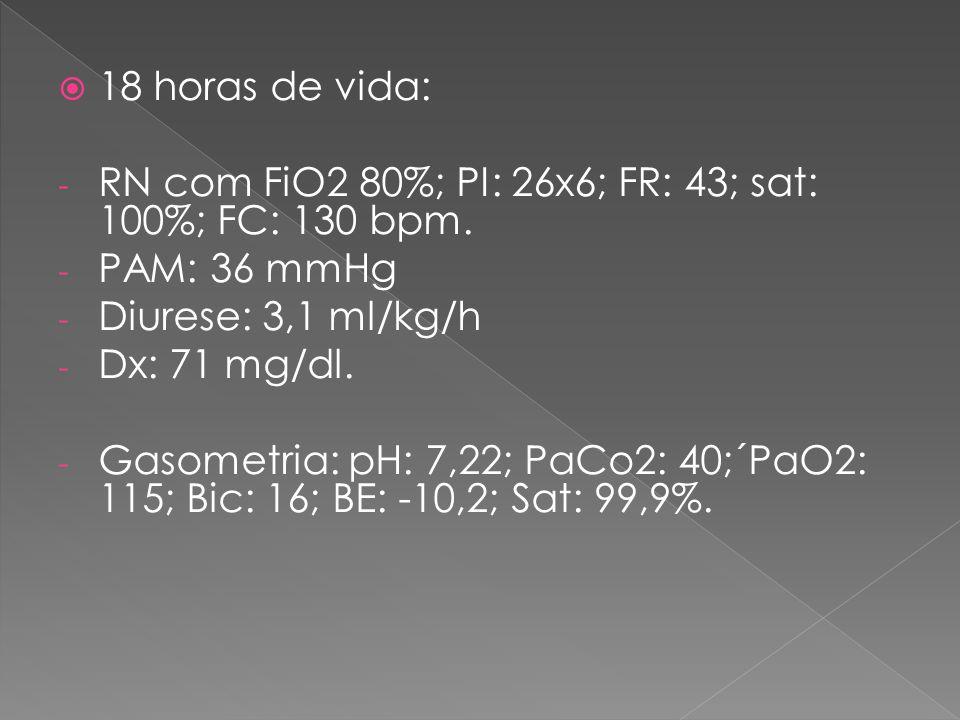  18 horas de vida: - RN com FiO2 80%; PI: 26x6; FR: 43; sat: 100%; FC: 130 bpm. - PAM: 36 mmHg - Diurese: 3,1 ml/kg/h - Dx: 71 mg/dl. - Gasometria: p