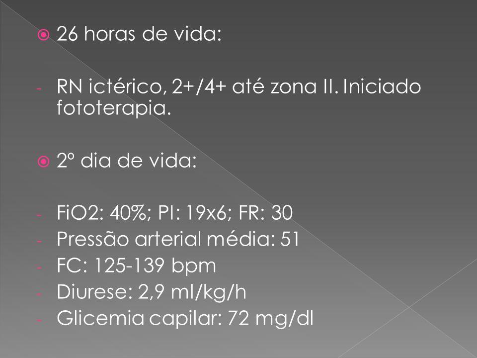  26 horas de vida: - RN ictérico, 2+/4+ até zona II. Iniciado fototerapia.  2º dia de vida: - FiO2: 40%; PI: 19x6; FR: 30 - Pressão arterial média: