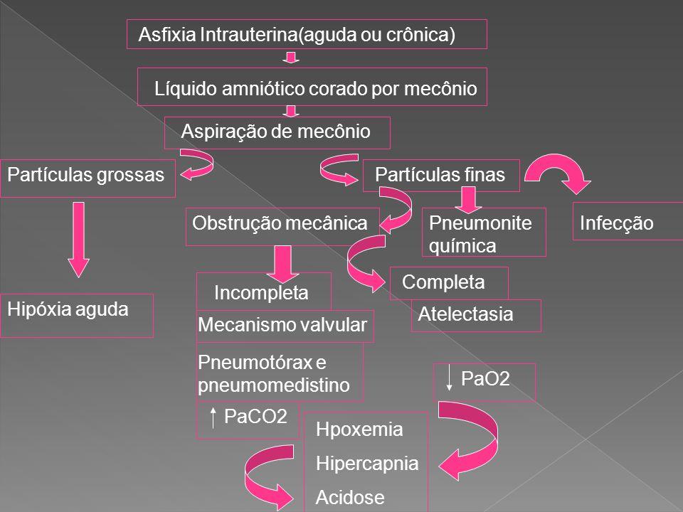 Asfixia Intrauterina(aguda ou crônica) Líquido amniótico corado por mecônio Aspiração de mecônio Partículas grossas Hipóxia aguda Partículas finas Obs