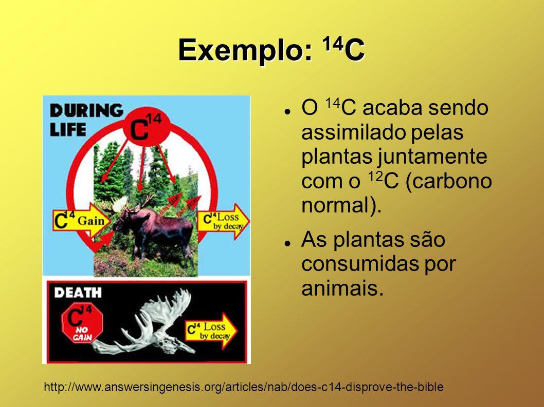 Exemplo: 14 C O 14 C acaba sendo assimilado pelas plantas juntamente com o 12 C (carbono normal). As plantas são consumidas por animais. http://www.an