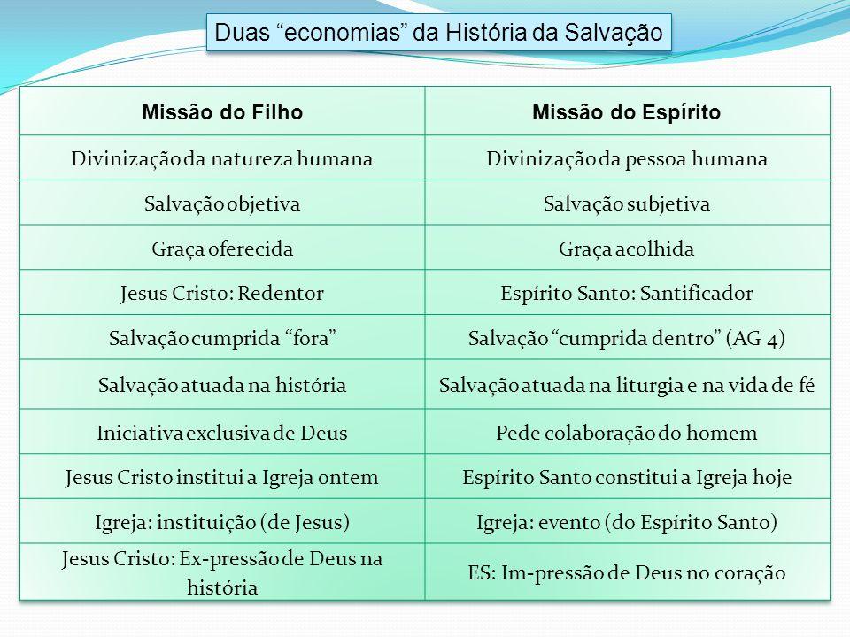 Duas economias da História da Salvação