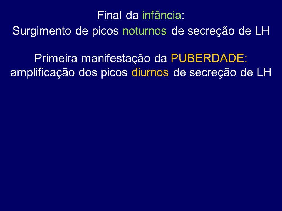 Final da infância: Surgimento de picos noturnos de secreção de LH Primeira manifestação da PUBERDADE: amplificação dos picos diurnos de secreção de LH
