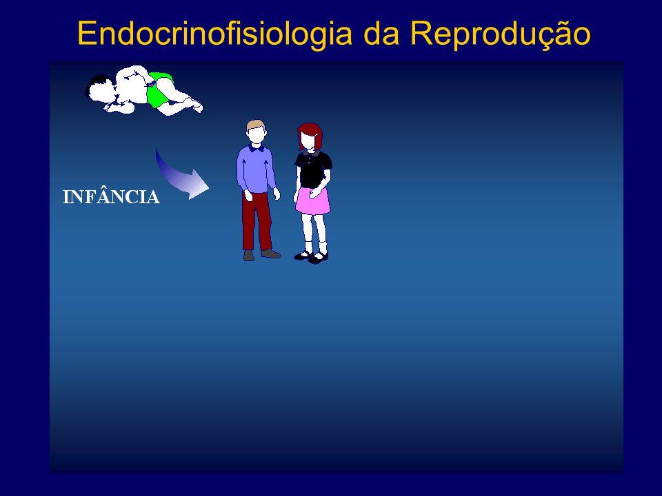 Endocrinofisiologia da Reprodução