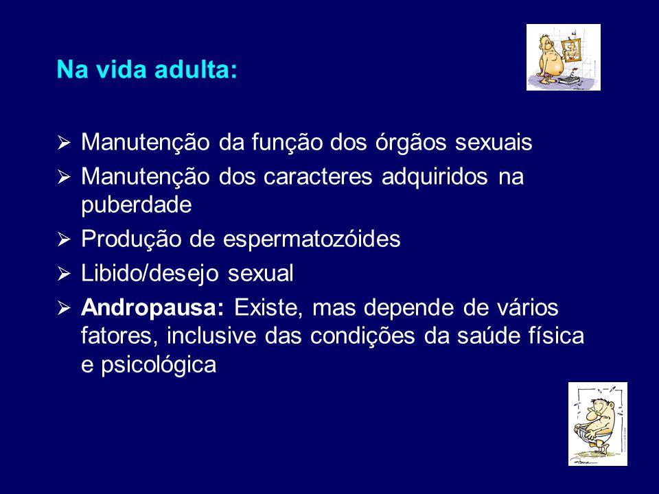 Na vida adulta:  Manutenção da função dos órgãos sexuais  Manutenção dos caracteres adquiridos na puberdade  Produção de espermatozóides  Libido/d