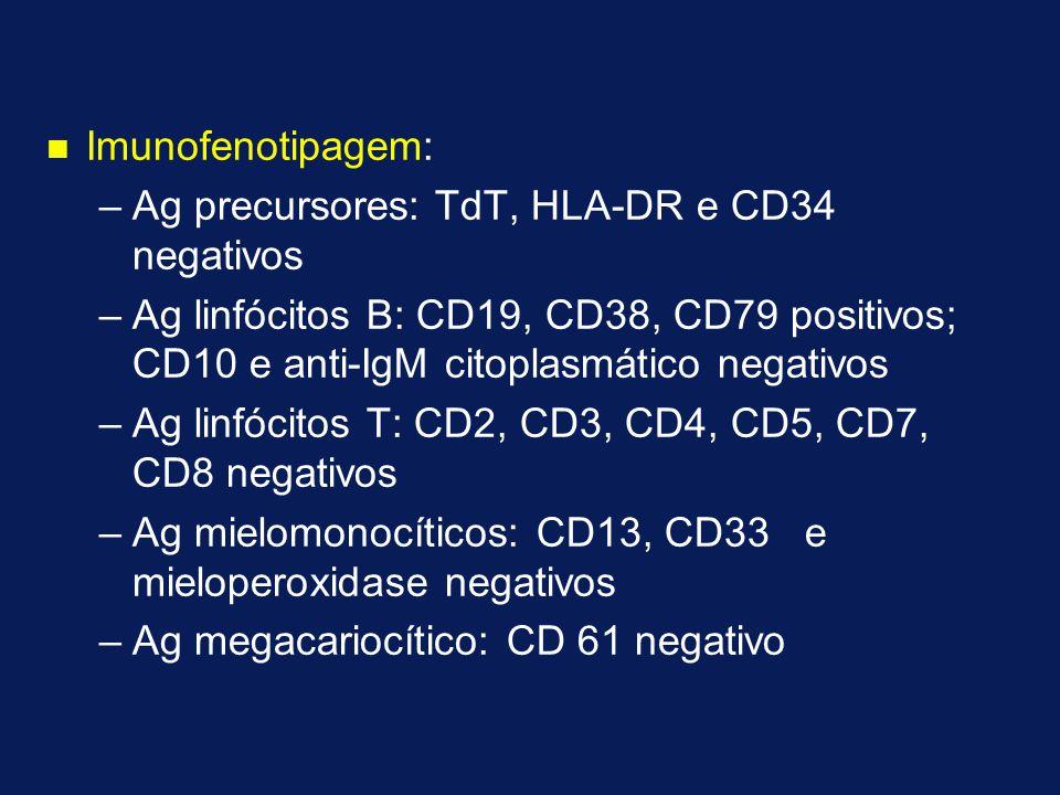 n n Imunofenotipagem: – –Ag precursores: TdT, HLA-DR e CD34 negativos – –Ag linfócitos B: CD19, CD38, CD79 positivos; CD10 e anti-IgM citoplasmático negativos – –Ag linfócitos T: CD2, CD3, CD4, CD5, CD7, CD8 negativos – –Ag mielomonocíticos: CD13, CD33 e mieloperoxidase negativos – –Ag megacariocítico: CD 61 negativo