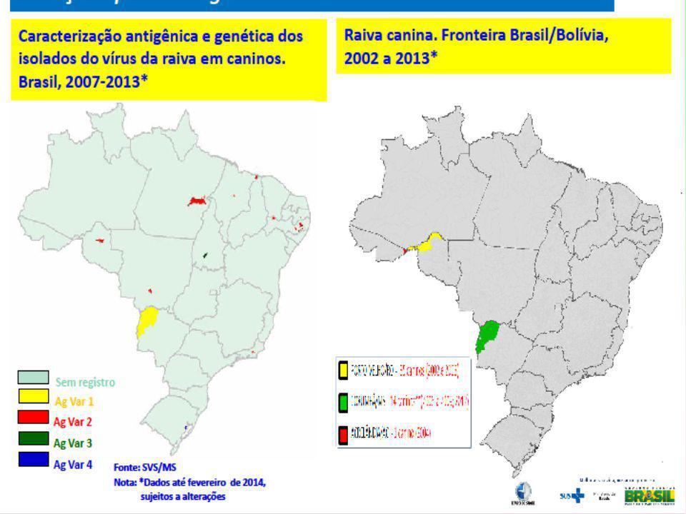 MUNICÍPIOS20002001200220032004 Dias D Ávila (1ª D) 1 Salvador (1ª D) 1 11 Feira de Santana (2ª D)1 Mata de São João (1ª D) 1 Jussari (7ª D)1 Jucuruçu (9ª D) 1 Itororó (14ª D) 1 Total22131 Fonte: DIVEP/SESAB CASOS DE RAIVA HUMANA, NO ESTADO DA BAHIA, 2000 A 2004
