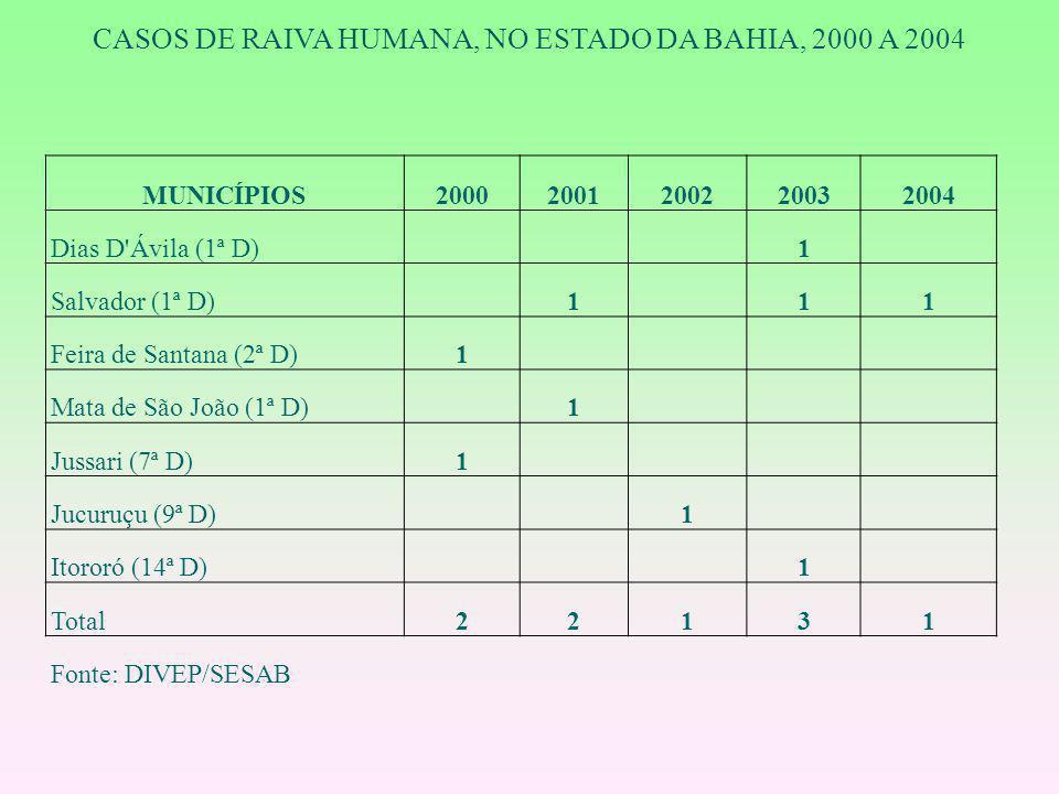 MUNICÍPIOS20002001200220032004 Dias D'Ávila (1ª D) 1 Salvador (1ª D) 1 11 Feira de Santana (2ª D)1 Mata de São João (1ª D) 1 Jussari (7ª D)1 Jucuruçu