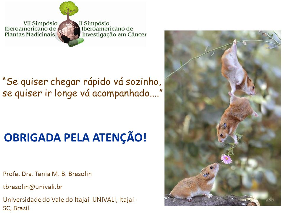 "Profa. Dra. Tania M. B. Bresolin tbresolin@univali.br Universidade do Vale do Itajaí- UNIVALI, Itajaí- SC, Brasil ""Se quiser chegar rápido vá sozinho,"